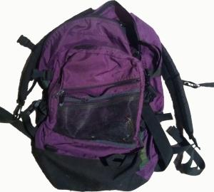 The precious daypack
