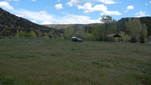 Camping spot near Cortez