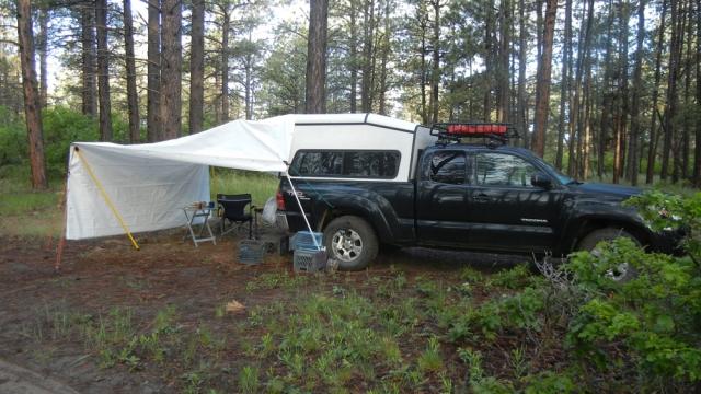camp2BoggyDraw