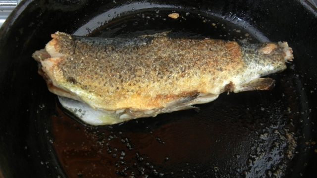 Burro Bridge Trout cooking