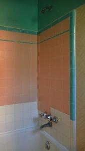 Cortez hotel shower