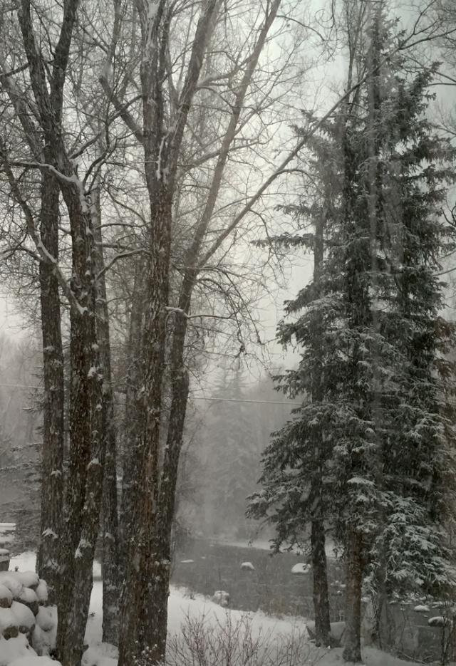 Woody Creek Winter