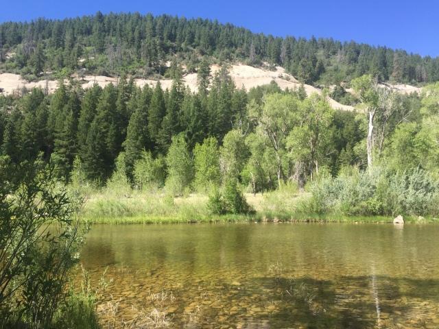 Dam Free Camping